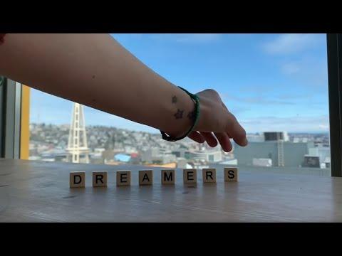 K.Flay - Dreamers Fan Video