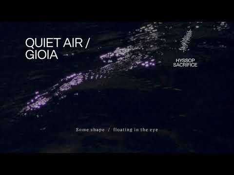 "Fleet Foxes - ""Quiet Air / Gioia"" (Lyric Video)"