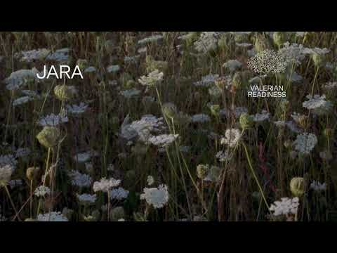 "Fleet Foxes - ""Jara"" (Lyric Video)"