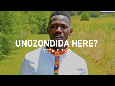 Unozondida Here? (Vocals Only) - Brian Nhira