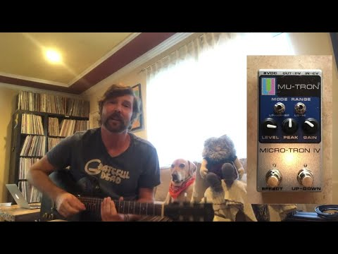 Mu-tron Micro-tron IV guitar pedal demo – Alex from The Record Company