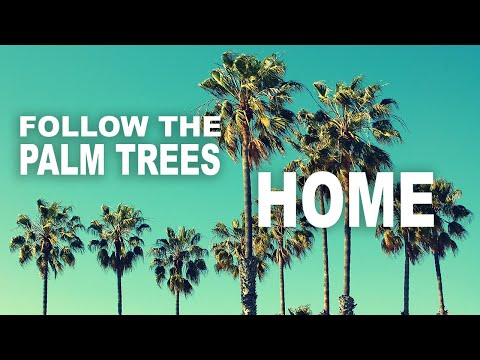 Follow the Palm Trees Home - Bryan Lanning (Official Audio Music Video)