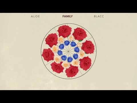 Aloe Blacc - Family (Official Audio Visualizer)