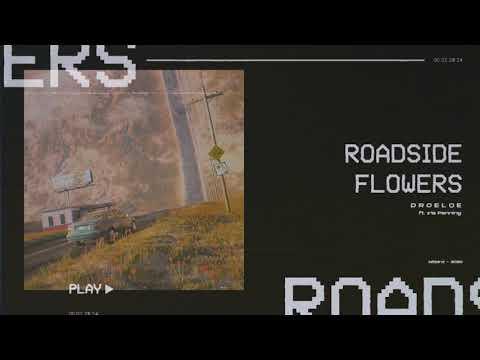 DROELOE - Roadside Flowers (ft. Iris Penning) [Official Audio]