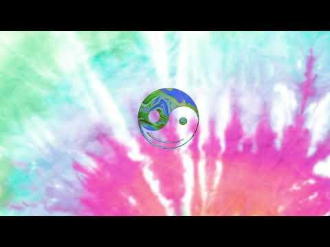 Brain Fuzz - GRiZ (Official Audio)