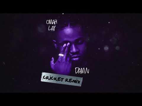Omah Lay - Damn [Cricket Remix] (Official Audio)