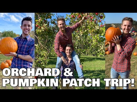 Husbands go Apple Picking & Pumpkin Patching - Chris and Clay