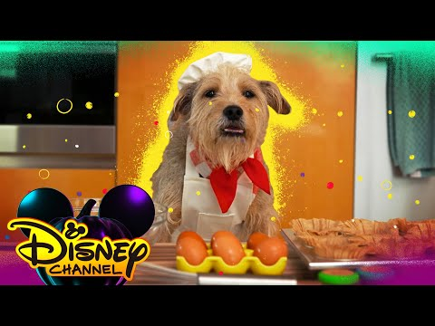 In the Kitchen with Sarah Jensen 🐶| Disney Channel Halloween House Party