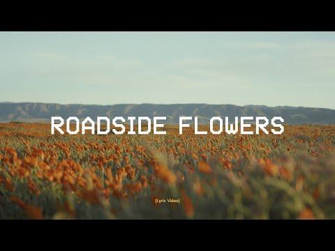 DROELOE - Roadside Flowers (ft. Iris Penning) [Official Lyric Video]