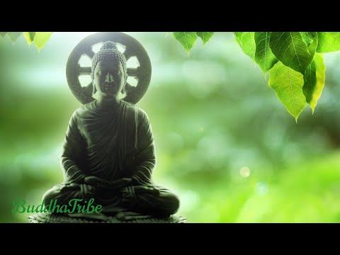 Música Calma Relaxante | Aprender A Meditar com Sons da Natureza, New Age ☆BT22