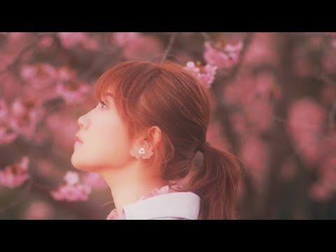 【僕だけが17歳の世界で】挿入歌 MACO「桜の木の下」Music Video <配信中>