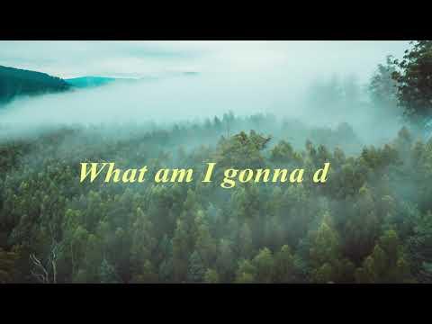 John Williamson - Rip Rip Woodchip (Lyric Video)