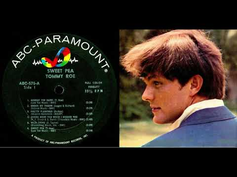 """TOMMY ROE- """"WHERE WERE YOU WHEN I NEEDED YOU"""" (LYRICS)"""