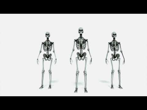 Pretenders - Junkie Walk (Official Video)