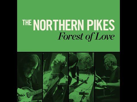 Forest Of Love - Album Release Concert 2019-06-06