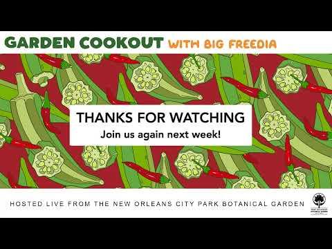 LIVE - Big Freedia's Garden Cookout