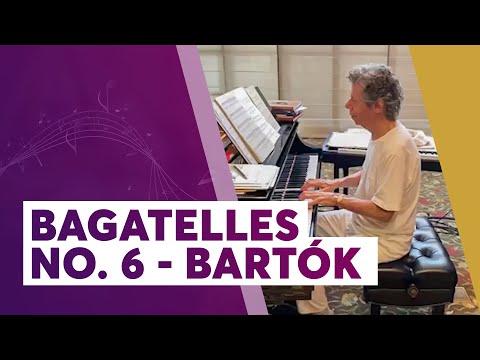 Chick Practices Bartók's Bagatelles No. 6