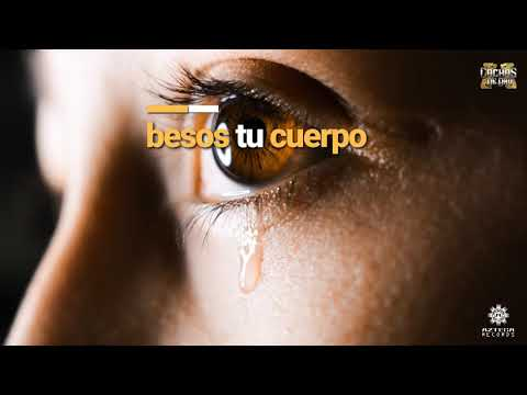 Cachas De Oro - Antes (Lyric Video)