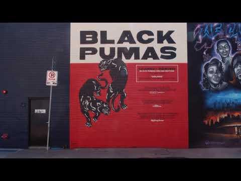 "Black Pumas - ""I'm Ready"" (Timelapse Mural Video)"