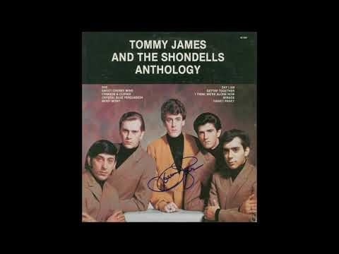 "TOMMY JAMES AND THE SHONDELLS- ""DONT LET MY LOVE PASS YOU BY"""