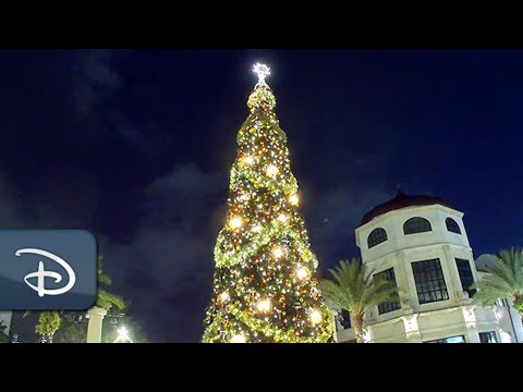 Disney Springs Christmas Tree Stroll Presented By AdventHealth   Walt Disney World