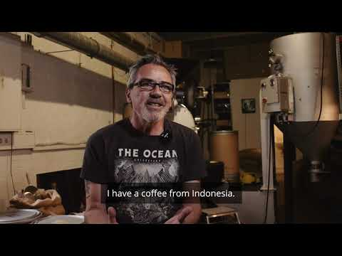 "Pelagic Coffee: MONO ""Rays of Darkness"" Introduction"