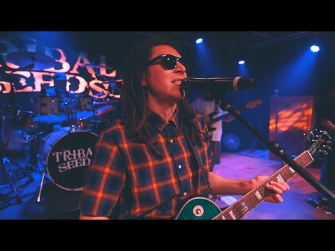 Tribal Seeds - Live: The 2020 Sessions (Full Show)