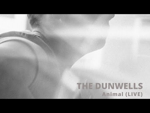 Live with The Dunwells (Friday)
