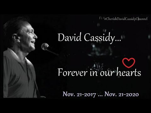 ✱ David Cassidy.. It's hard to forget someone who gave us so much to remember ✱
