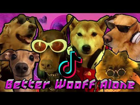 Alice dj - Better off alone *tiktok compilation better wooff alone*