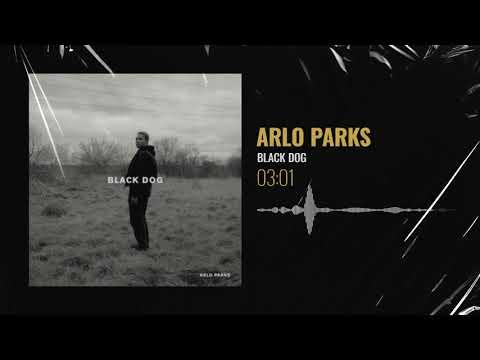 Arlo Parks - Black Dog | Put Me On