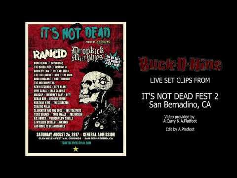 BUCK-O-NINE Live at It's Not Dead Festival