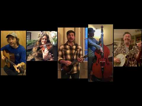 Yonder Mountain String Band - She's Gone, Gone, Gone (cover)