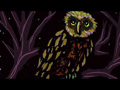 THE OWL PART 1