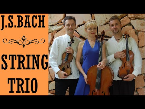 J.S. Bach - Great Goldberg Variations for String Trio, BWV 988/arr. by F. Sarudiansky