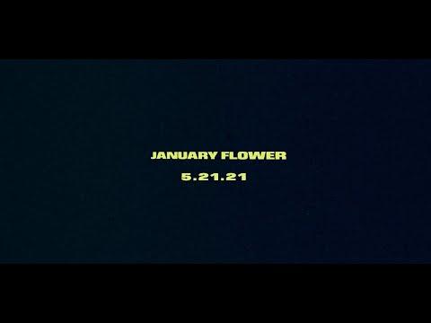 Mat Kearney - January Flower (Album Trailer)
