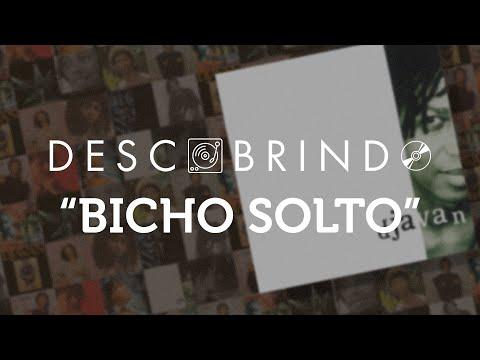 """Descobrindo: """"Bicho Solto - O XIII"""""""