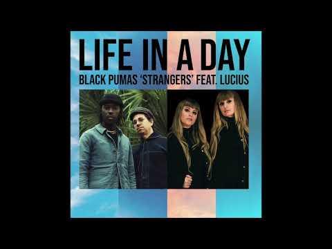 Black Pumas + Lucius - Strangers (The Kinks Cover)