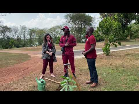 GNL Zamba TV: Tree Planting Ceremony at Chobe Safari Lounge with Nsimbi