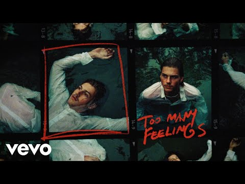 Ruel - too many feelings (Lyric Video)