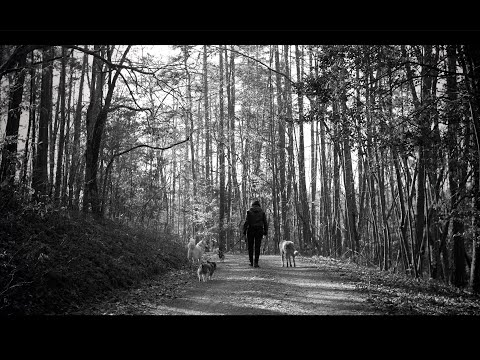 Amy Ray- MUSCADINE (Official Music Video)