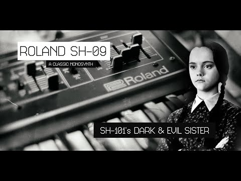 Roland SH-09 the Dark Sister of the SH-101  | CONFORCE