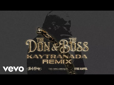 The Don & The Boss (KAYTRANADA Remix) (Visualizer) KAYTRANADA Remix
