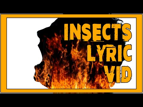 INSECTS LYRIC VIDEO
