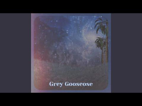 Grey Gooseose