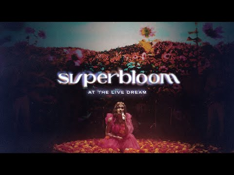 MisterWives - SUPERBLOOM (at the Live Dream)