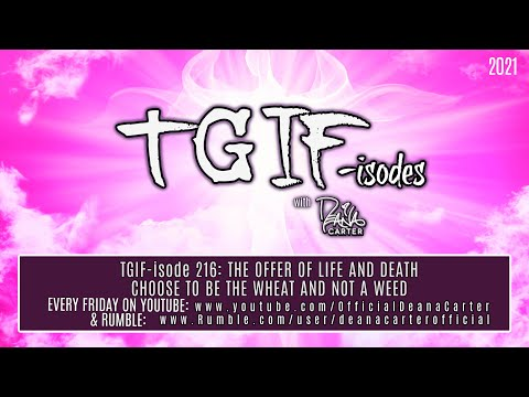 TGIF-isode 216 THE OFFER OF LIFE AND DEATH CHOOSE TO BE THE WHEAT AND NOT A WEED