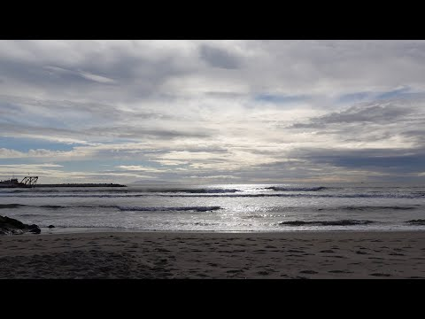 Calm Music and Ocean Ambience (30 Minutes) | Relax with Brett Dennen