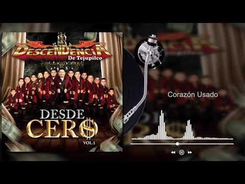 La Descendencia De Tejupilco - Corazón Usado - Desde Cero, Vol.1 (Audio)