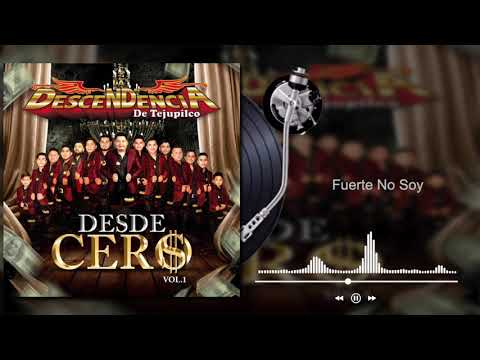 La Descendencia De Tejupilco - Fuerte No Soy - Desde Cero, Vol. 1 (Audio)
